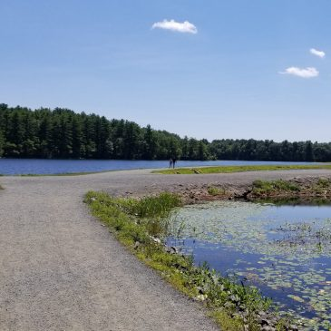Massachusetts State Parks – Get a Senior Parks Pass