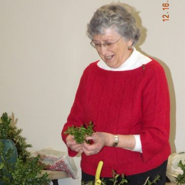 Holiday Boxwood Craft with Sudbury Garden Club